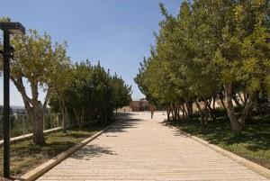Мемориал Яд Ва-Шем. Аллея Праведников Мира foto http://z-kedr.ru/